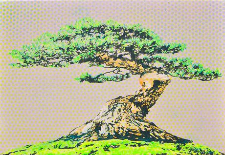 Goyo-matsu-01-web.jpg